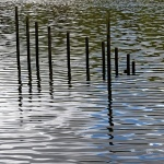 Reflets_Penfeld-3-web.jpg